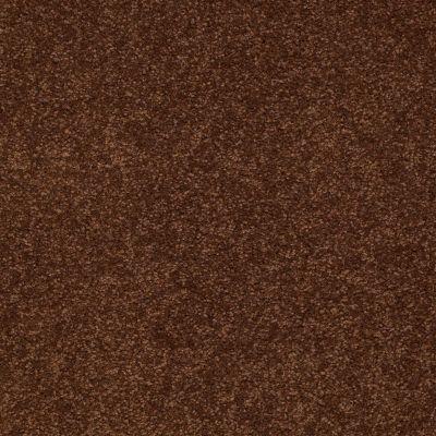 Shaw Floors Magic At Last II 15′ Cocoa 00707_E0235