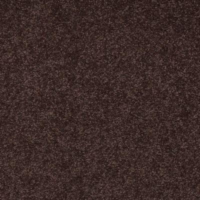 Shaw Floors Magic At Last III 15′ Dark Chocolate 00708_E0236