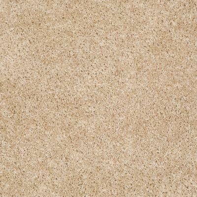 Shaw Floors Vermont (s)12′ Muslin 00102_E0263