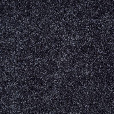 Shaw Floors Vermont (s)12′ Summer Night 00401_E0263