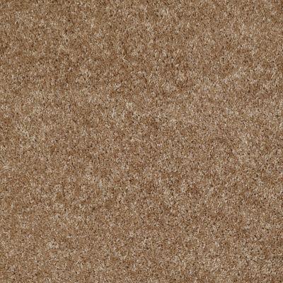 Shaw Floors Vermont (s)12′ Bungalow 00701_E0263