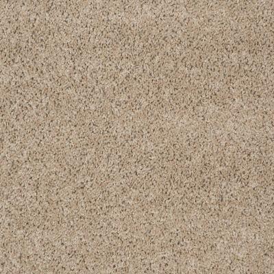 Shaw Floors Thunder Struck (s) Pebble 00710_E0272