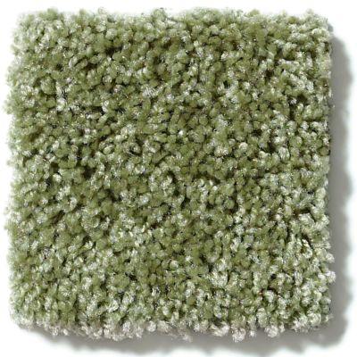 Shaw Floors Vitalize (s) 12′ Ivy Gate 00300_E0276
