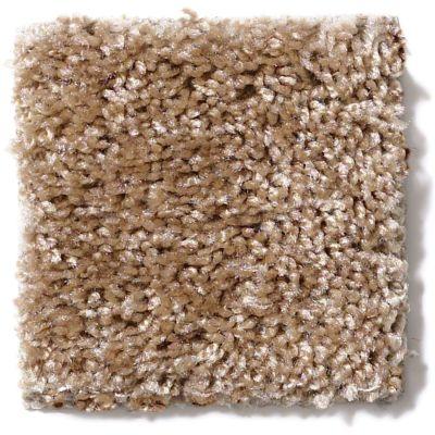 Shaw Floors Vitalize (s) 12′ Dusty Trail 00700_E0276