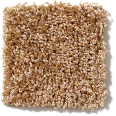 Shaw Floors Vitalize (s) 15′ Corn Silk 00200_E0277