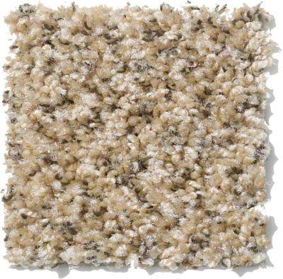 Shaw Floors Vitalize (b) Sand Stone 00211_E0278