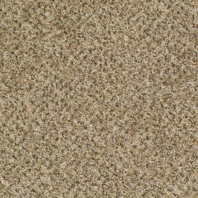 Shaw Floors Value Fleck 25 Soft Meadow 00300_E0280
