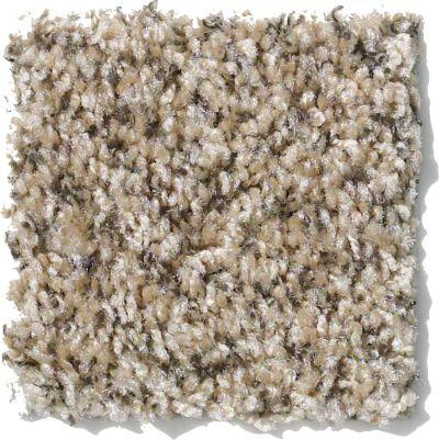 Shaw Floors Value Fleck 25 Stone Hearth 00702_E0280
