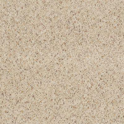 Shaw Floors Fusion Value 400 Cottage 00160_E0282