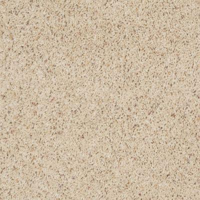 Shaw Floors Fusion Value 400 Southern Charm 00161_E0282