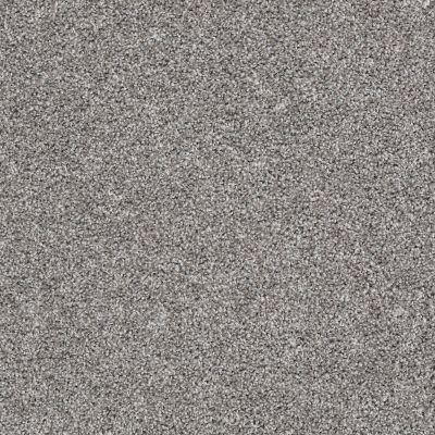 Shaw Floors Go For It Granite 00713_E0322