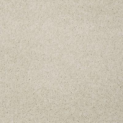 Shaw Floors Enduring Comfort I China Pearl 00100_E0341