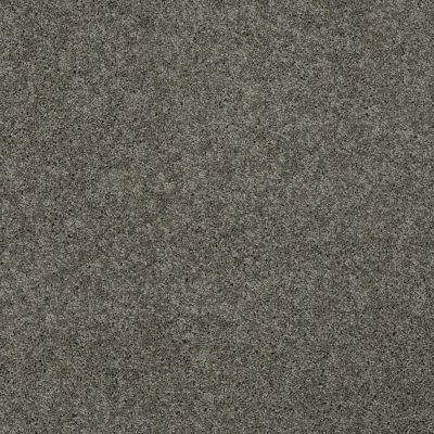 Shaw Floors Enduring Comfort I Grey Flannel 00501_E0341