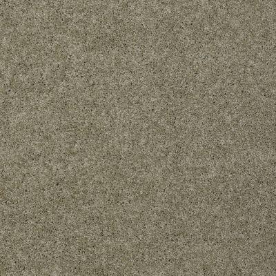 Shaw Floors Enduring Comfort I Smooth Slate 00704_E0341