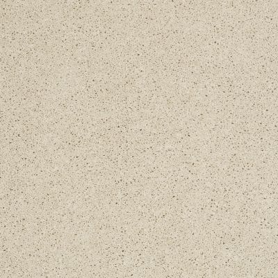 Shaw Floors Enduring Comfort III Pale Cream 00121_E0343