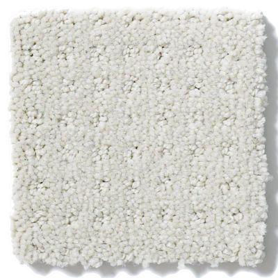 Shaw Floors Enduring Comfort Pattern Polar 00104_E0404