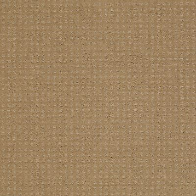 Shaw Floors Enduring Comfort Pattern Cologne Mist 00128_E0404