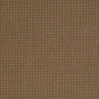 Shaw Floors Enduring Comfort Pattern Bonsai 00324_E0404