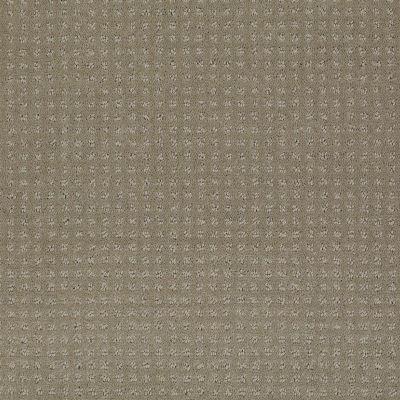 Shaw Floors Enduring Comfort Pattern Smooth Slate 00704_E0404