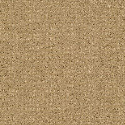 Shaw Floors Enduring Comfort Pattern Honey Pot 00722_E0404