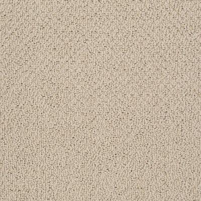 Shaw Floors Timeless Charm Loop Clay Stone 00108_E0405