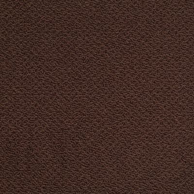 Shaw Floors Timeless Charm Loop Apple Butter 00728_E0405