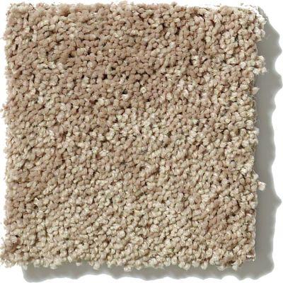 Shaw Floors Get Cozy III (s) Deer Field 00105_E0472