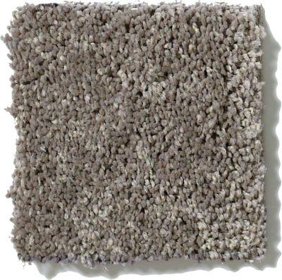 Shaw Floors Get Cozy III (s) Steel 00501_E0472