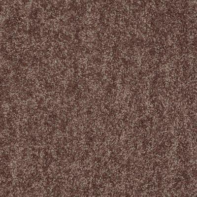 Shaw Floors Expect More (s) Sweet Fudge 00715_E0473