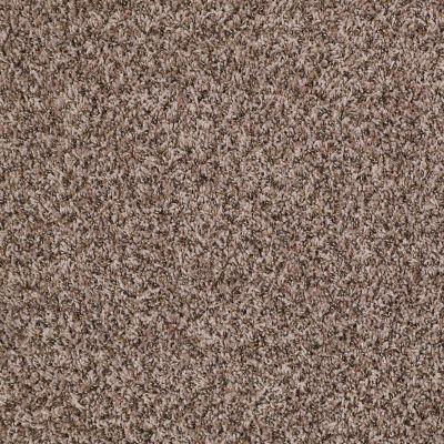 Shaw Floors Ride It Out (b) Cobble Stone 00711_E0476