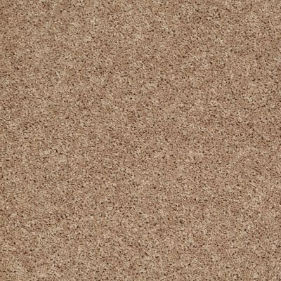 Shaw Floors Pay Attention Saddle Tan 00700_E0494