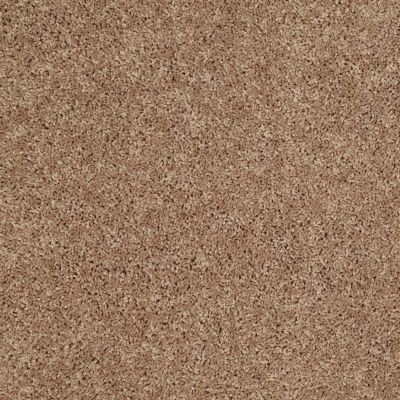 Shaw Floors Pay Attention Vintage Tan 00714_E0494