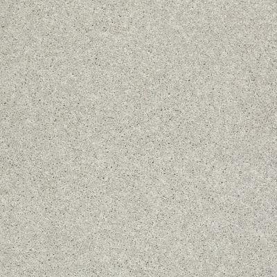 Shaw Floors Clearly Chic Bright Idea I Chrome 00501_E0504