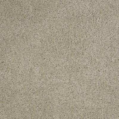 Shaw Floors Origins Haven 00309_E0523