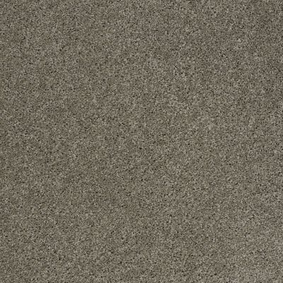 Shaw Floors Origins Pewter 00513_E0523