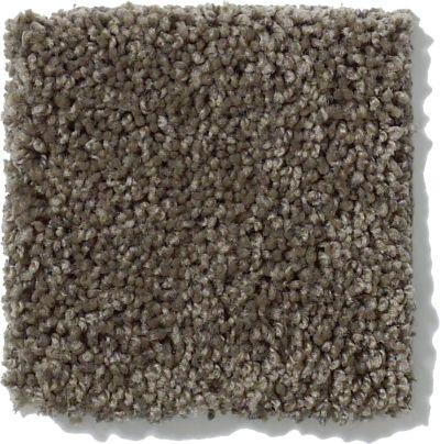 Shaw Floors Origins Graphite 00712_E0523