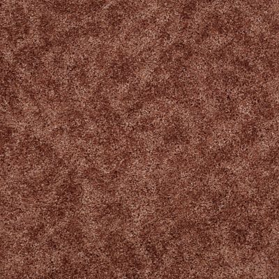 Shaw Floors Focus Mauve Blush 00800_E0524