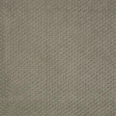 Shaw Floors Genesis Silver Sage 00310_E0525