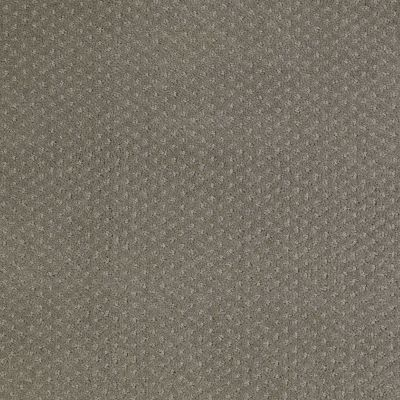 Shaw Floors Genesis Pewter 00513_E0525