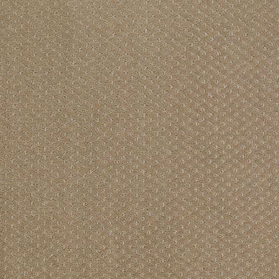 Shaw Floors Genesis Prairie 00710_E0525