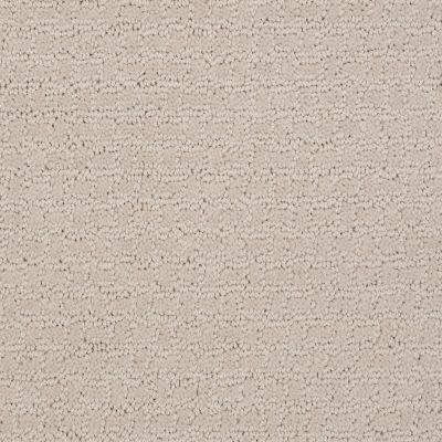 Shaw Floors Activate Canvas 00103_E0526