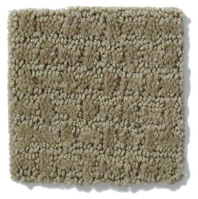 Shaw Floors Activate Prairie 00710_E0526