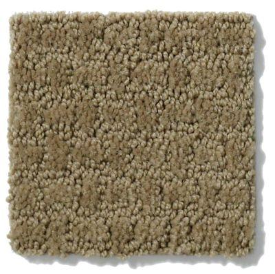 Shaw Floors Activate Travertine 00711_E0526