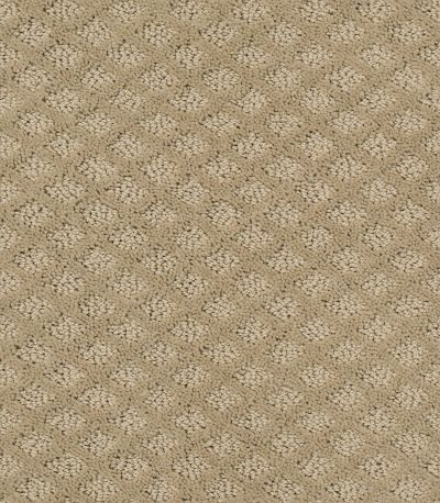 Shaw Floors Pace Setter Wool Skein 00111_E0527