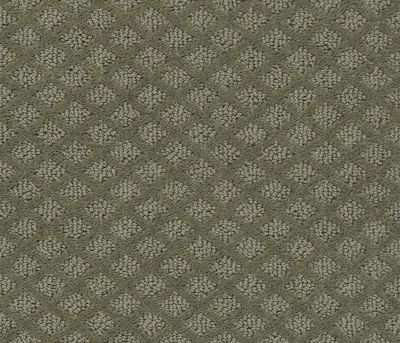 Shaw Floors Pace Setter Pewter 00513_E0527