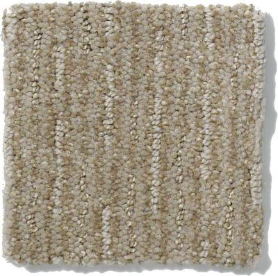 Shaw Floors Speed Of Light Gray Flannel E0528_00511