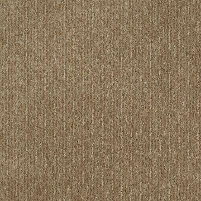 Shaw Floors Speed Of Light Prairie 00710_E0528