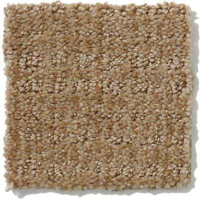 Shaw Floors Breakthrough Mushroom 00703_E0529