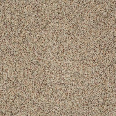 Shaw Floors Emerge (a) Crown Jewel 00135_E0541