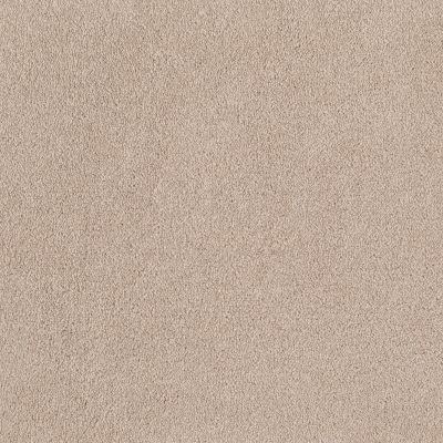 Shaw Floors Sandy Hollow Classic I 12′ Pudding 00102_E0548